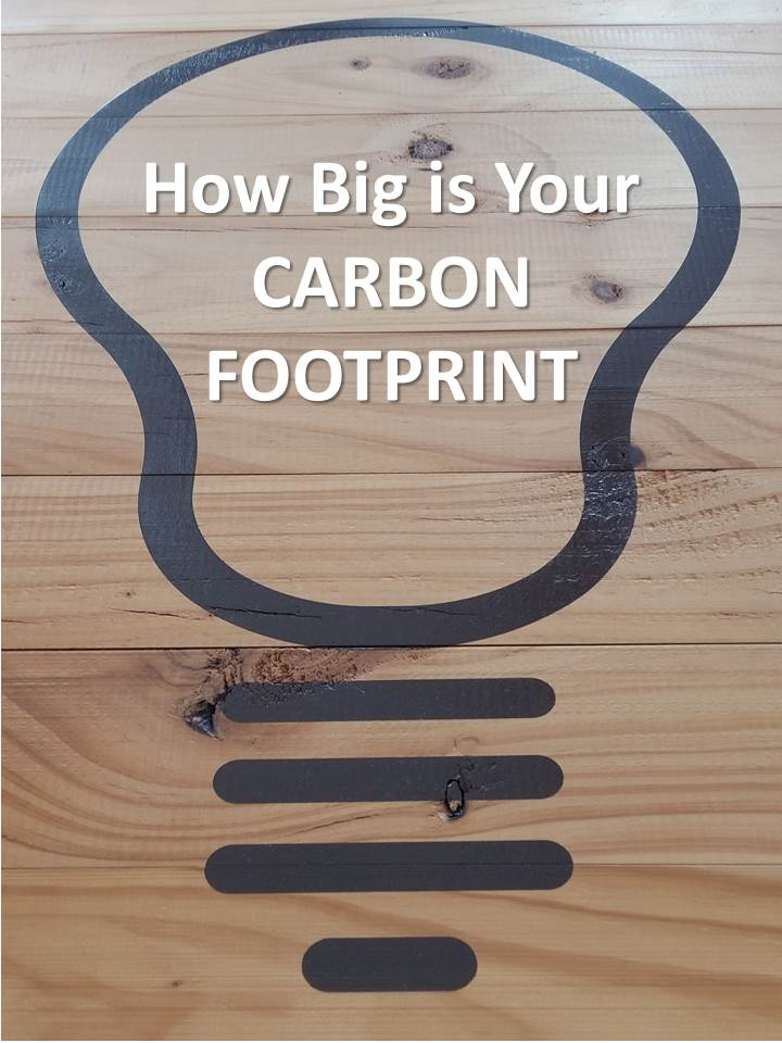 How Big is Your Carbon Footprint
