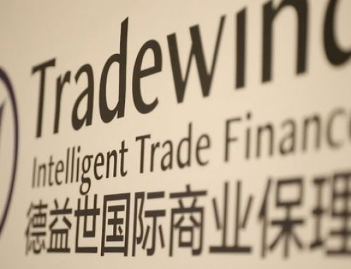 Tradewind Provided Export Factoring for a Fashion Houseware Trading Company Based in Shanghai